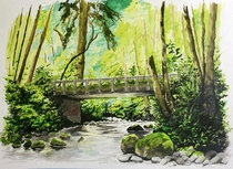 An old bridge in the middle of the Pacific Northwest US forest It took me about a month to finish this piece