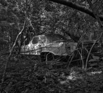An old Buick left to rust in the woods