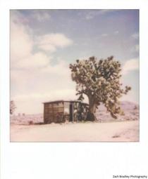 An old cabin in the Mojave Desert