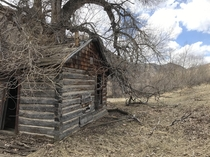 An old cabin we found on a hike