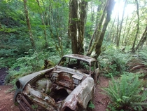 An old Chevy we stumbled upon two miles into a hike in Oregon