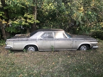 An old Chrysler thats been in a yard for  years