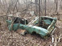 An old Hillman Super Minx Estate I found in the middle of the woods