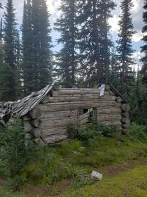 An old miners cabin last inhabited in  by Fred Porter Yanks Peak Rd Barkerville BC