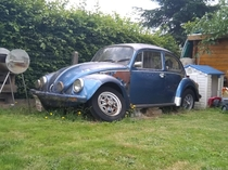 An old VW Beetle in my friends garden they wanted to restorate it but life got in the way