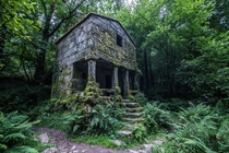 An overgrown structure deep in the forest of Galicia Spain  by Francisco Lopez