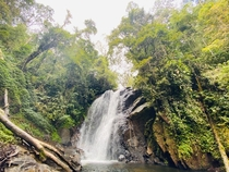 An unnamed waterfall in Sinharaja rainforest LKA