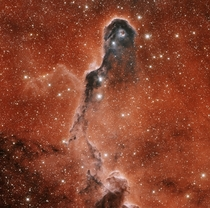 An Unusual Globule in IC  aka Elephants Trunk Nebula -- Energetic light from a bright young star is eating away the dust of the dark cometary globule near the top of the image Jets and winds of particles emitted from this star are also pushing away ambien