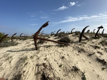 Anchor Graveyard from an old tuna fishing village in Praia Do Barril Portugal