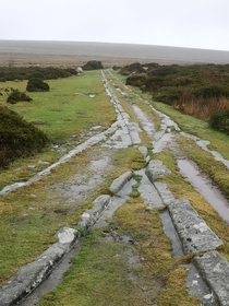 Ancient horse-drawn tramway built  to carry granite from the quarries on Dartmoor UK The granite tracks guide the wheels