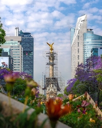 Angel de la independencia Mexico  OscarDZ