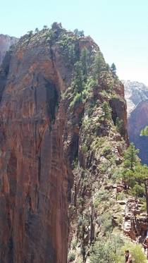 Angels Landing Zion National Park Utah