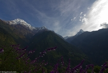Annapurna South and Macchapuchhere Nepal