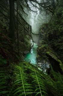 Another beautiful rainforest canyon located in southwestern British Columbia