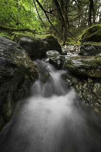 Another mini waterfall on Limpy Creek Near Grants Pass OR