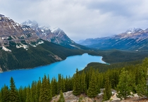 Another photo from my trip to the Canadian Rockies Peyto Lake Alberta