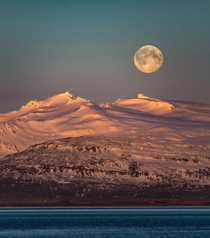 Another shot of my moon series  moonset over the Icelandic mountains while the sun rises  - more of my landscapes at insta glacionaut