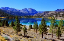 Another view of scrumptious June Lake California United States by Dave Toussaint