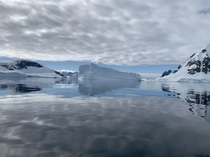 Antarctic Peninsula Cloudy Day Reflection  Massive Ice Berg recently Separated from Coastal Glacier