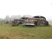 Antique cars in a field in Northern Maine