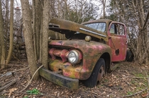Any guesses as to how long this old abandoned truck has been sitting here OC -