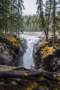 Anybody else chasing waterfalls this summer Siffleur Falls AB Canada