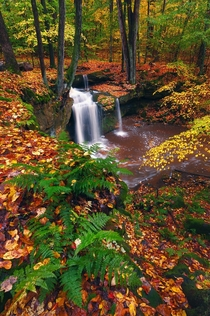 Anyone else need some color today Little Ohio waterfall OC x