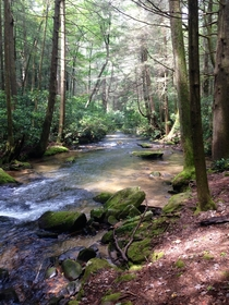 Appalachian mountain stream North Georgia