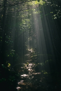 Appalachian Trail Sunshafts