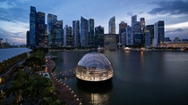 Apple Marina Bay Sands Singapore  Foster  Partners