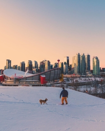 Approximately cm of snowfall overnight in Calgary Alberta Perfect time to take the snowboard to the dog park