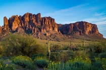Arizonas Superstition Mountains in Spring OC
