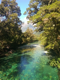 Arthur River Milford Track New Zealand