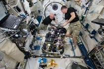 Astronauts at Work on the International Space Station x