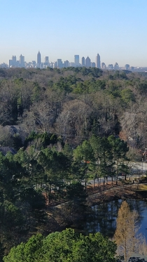 Atlanta the city in a forest