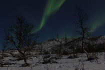 Aurora Borealis over Northern Norway