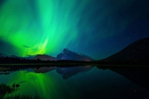 Aurora borealis over rundle Mountain Banff