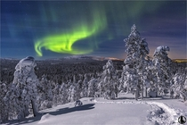 Aurora Borealis over the forest of the Pyhae Luosto National Park Finland