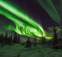 Aurora season has started again  anyone else excited to see them this year Like in this case in Troms Norway  - more of my northern lights at insta glacionaut