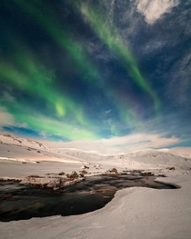 Auroras green carpet over snowy Senja