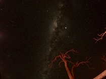 Australian night sky The red tree is from the light from a bonfire Shot on a GoPro