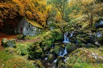 Autumn at a  year old mill  by Arnaud Chassagne