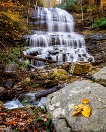 Autumn At Pearsons Falls  Saluda NC