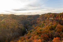 Autumn Colours in Spencers Gorge Hamilton Ontario Canada