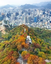 Autumn foliage at the downtown enclosed by mountains Seoul South Korea