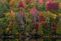 Autumn glory in the Adirondacks in Upstate NY