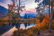 Autumn Haze  Bishop California