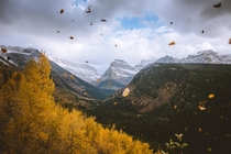 Autumn in Montana  IG petenathanson