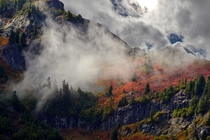Autumn in Mount Rainier National Park