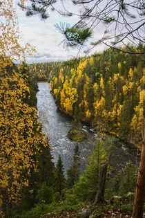 Autumn in Northern Finland Oulanka NationalPark